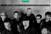 Diary / Dr. Ring Ding Ska-Vaganza
