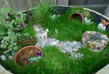 Fairy Gardens / by ms.bug