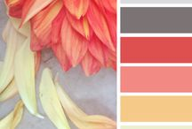 Colour / Colour palette