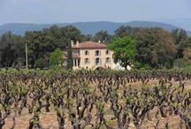 Provence / My favourite places and things in Provence