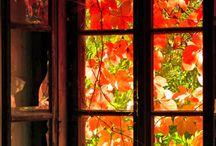 Autumn ❤