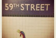 NEW YORK, November 2012