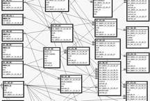 Database / database vendor