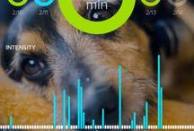 Mobile UX   Data Vis