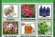 natural medicine / return to the wise nature