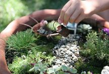 Miniature Fairy Gardens / Fun miniature gardens  / by Garden Design