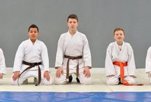 Martial Arts Training / Useful information for Instructors and Students.