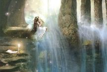 Charlotte bird fairies