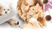 Feelgood Pets / Holistic Health for Dogs, Cats and other pets