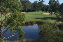 Golf fun / Golf Courses