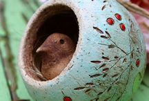 Platser att besöka fågelbo