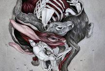 illustration : christina mrozik