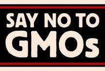 Say NO to GMOs / by Lynda A