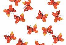 Butterflies / Butterfly Art