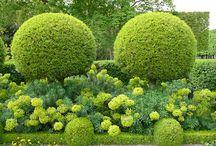 Garden / Inspiratie