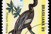 Latin America Postage Stamps / by sandi mcdonell