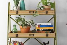 HOME :: House Plants / How to keep house plants. How green is your house? How to guides and styling inspiration for house plants.