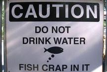 Fishing Humour
