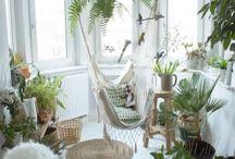 Plants and interior
