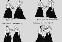 Aïkido / Noms saisies