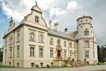 Przyszowice - Pałac / Pałac w Przyszowicach wybudowany został przez rodzinę von Raczek w latach 1890-95. Obecnie mieści się tutaj kilka placówek: przychodnia lekarska, przedszkole, biblioteka. W części budynku umieszczono także ekspozycję na temat historii pałacu oraz związanej z miejscowością rodziny von Raczków.  The palace in Przyszowice was built by the von family Raczek in 1890-95 years. At present here a few institutions are located: a doctor's surgery, nursery school, library.