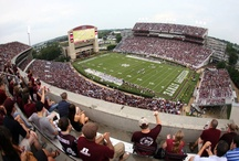 All Things Mississippi State/Tailgating / by Cindy Peden