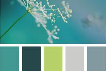 Colour Palettes / ...combinations that work together well.