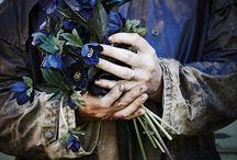 Lisa Cooper FLOWERS