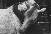 horse love  / by Sabrina Ruiz