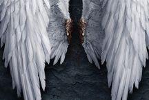 Angels,Fairies&MagicalCreatures I love