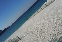 일본ㅡ시라하마(백빈-하얀모래) 바닷가