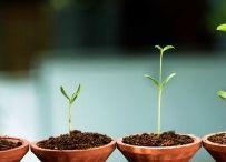 small home business ideas blog