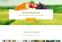 Web design organic / Diseños de páginas web relacionadas con productos sanos.