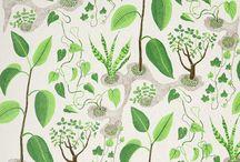 Patterns and textures / patrones y texturas