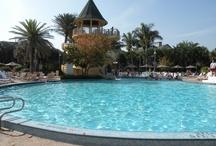 Other Disney Vacations / Disney's Hilton Head, Vero Beach, Disneyland Paris, Tokyo Disney, Hong Kong Disney