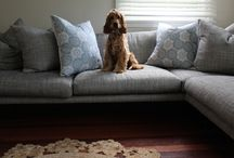 Pets at home / by househunting.ca