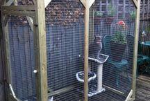 cages pour chat