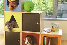 Organizing at home