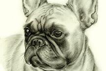 Ranskanbulldogit