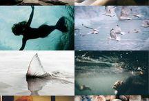 Mermaid ||aesthetic