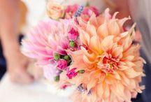 Moe / Flowers