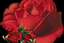 animated red roses