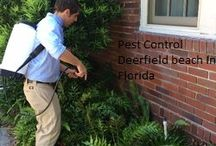 Pest Control Deerfield beach In Florida / Pest Logic has been in service since 1976 in the Palm Beach county, Broward and Dade areas. For 40 years, Pest logic has been continually providing quality pest control services that include Bed bug treatments, Pest management, Termite problem, Rodent problem, soil pre-treatment, wildlife entrapment, complete lawn solutions, fleas and ticks treatment for our furry friends, etc.