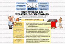 Direito do Trabalho e Previdenciário.