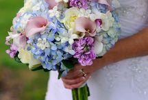 ravender&blue