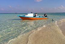 Tropiska paradis / Tropiska paradis vi har hittat och rest till med familjen. I hela världen.