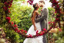 Outdoor Weddings / Outdoor Weddings
