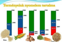 Zöldségek, vitaminok hatóanyagtartalma