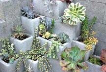 jardim de blocos