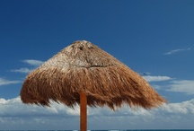 Dream vacation  / by Nicole Majors